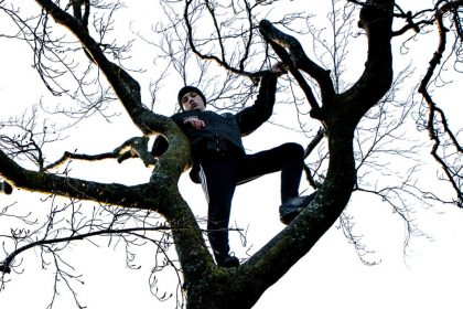 Self isolating up a tree